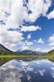 Mountain Reflector - Vertical