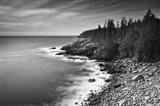 Acadia Coastline BW
