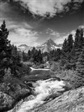 Glacial Creek - Monochrome