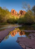 Cathedral Rock Reflection Vertical