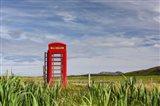 Pastoral Phone Box