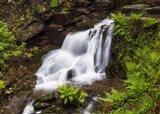 Nectan's Waterfall