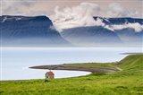 Fjord Shack