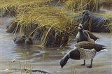 Nauesink River Mates