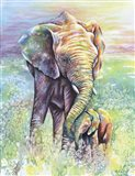 Mother & Baby Elephant Rainbow Colors