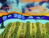 Mountain Vineyard