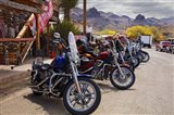 Rt 66 Fun Run Oatman Motorcycles