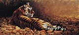 Reclining Tiger