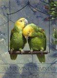 Pair of Lovebirds