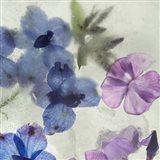 Flores en Hielo I