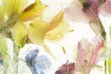 Flores en Hielo IX