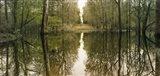 Suwanne Reflection Panoramic