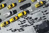 Shadows in NY