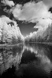 Mirror Of Heaven, Palms Book State Park, Michigan 12