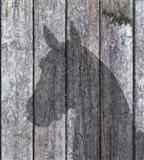 Horse Shadow