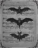 Vintage Bats 1