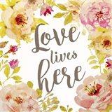 Loves Lives