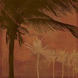 Caribbean Sun I