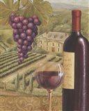 French Vineyard IV