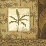 Palmier Tropical II