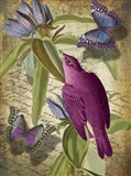 Petals and Wings VI