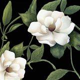Sweet Magnolias I