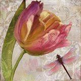 Tulip Tempest II