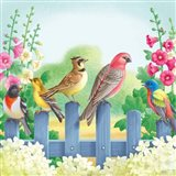 Songbirds On Fence