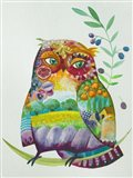 Owl From Provence