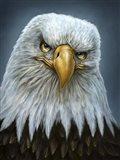 Bald Eagle Totem
