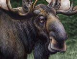 Moose Totem