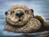 Otter Totem