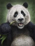 Panda Totem