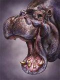 Hippo Totem
