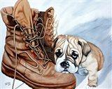 Boots Bulldog