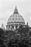 St Pierre de Rome Basilica