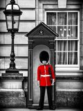 Buckingham Palace Guard - London