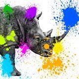 Safari Colors Pop Collection - Rhino Portrait II