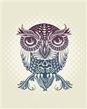 Baby Egypt Owl
