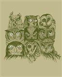 Nine Owls