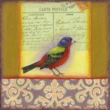 Carte Postale Bird 1