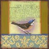 Carte Postale Bird 3