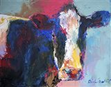 B Cow
