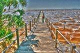 Cedar Key Pier