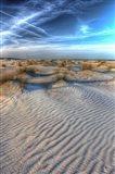 Dune Lines Vertical