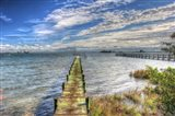 Green Pier And Sea Grass