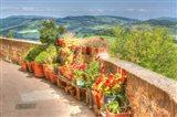 Tuscan Garden View