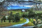 BC Driveway View