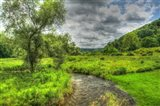 Dutchess County Stream And Meadow