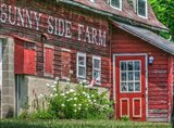 Farm Lettering 1